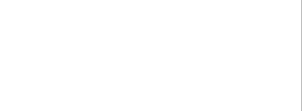 Internationale Wirtschaftsberatung Gert Hager